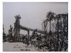 012-madero-con-silos_0